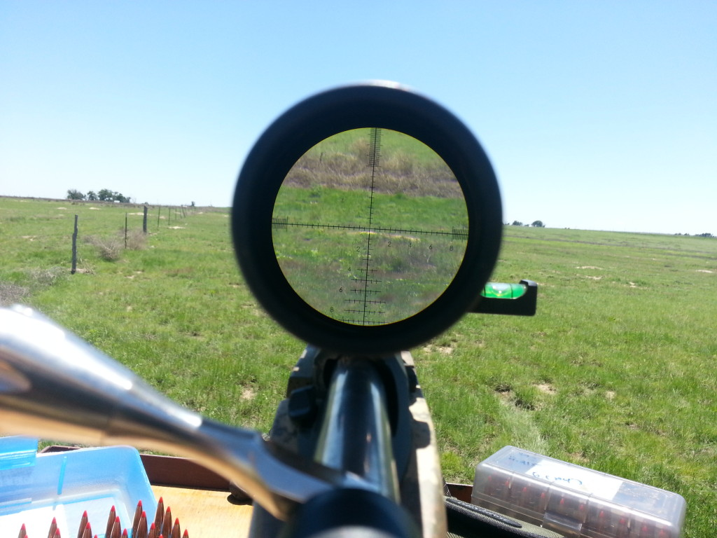 Bushnell Review